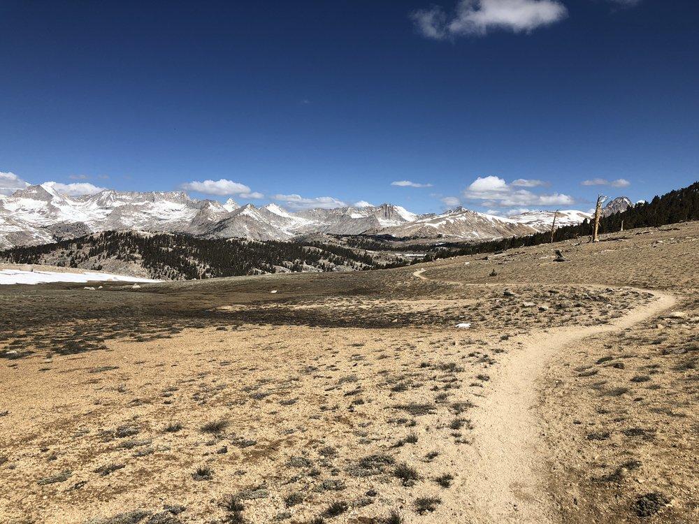 Bighorn Plateau