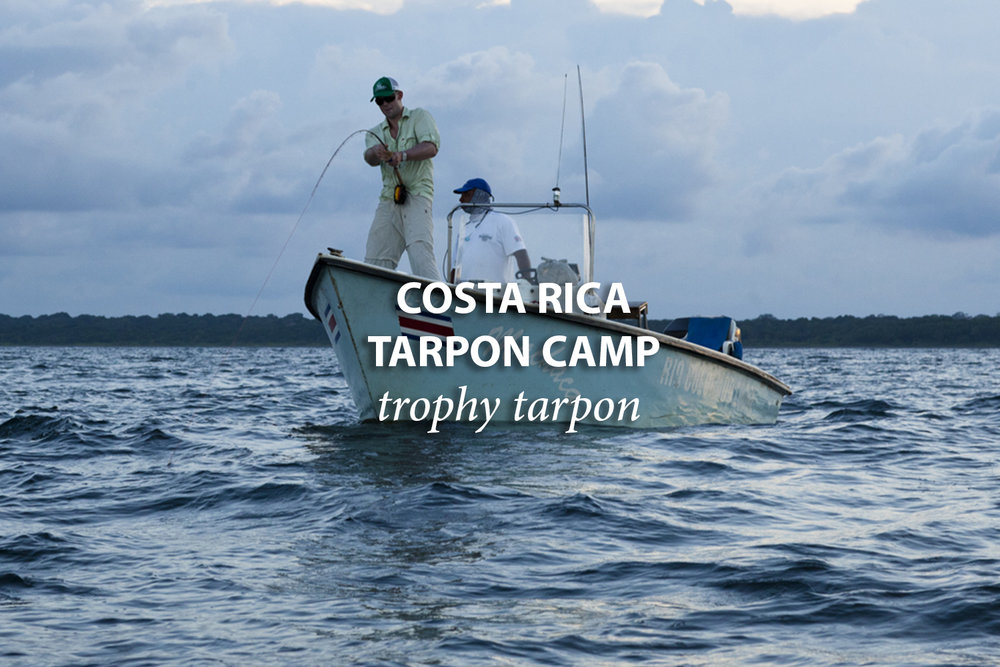 Costa-Rica-Tarpon-camp.jpg