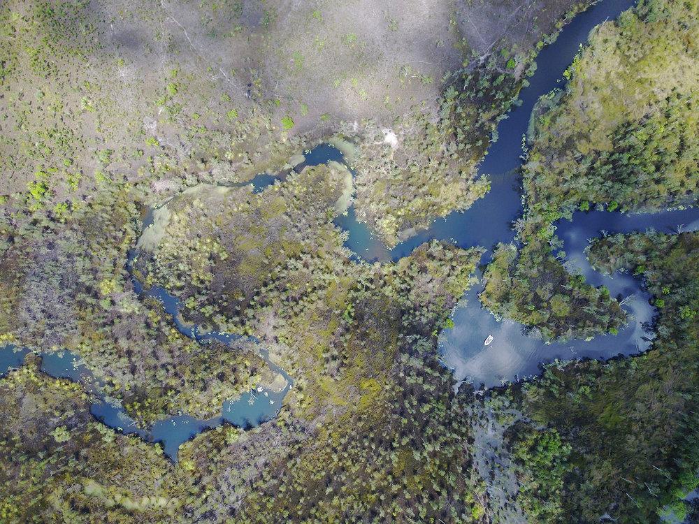 goose-creek-aerial.jpg