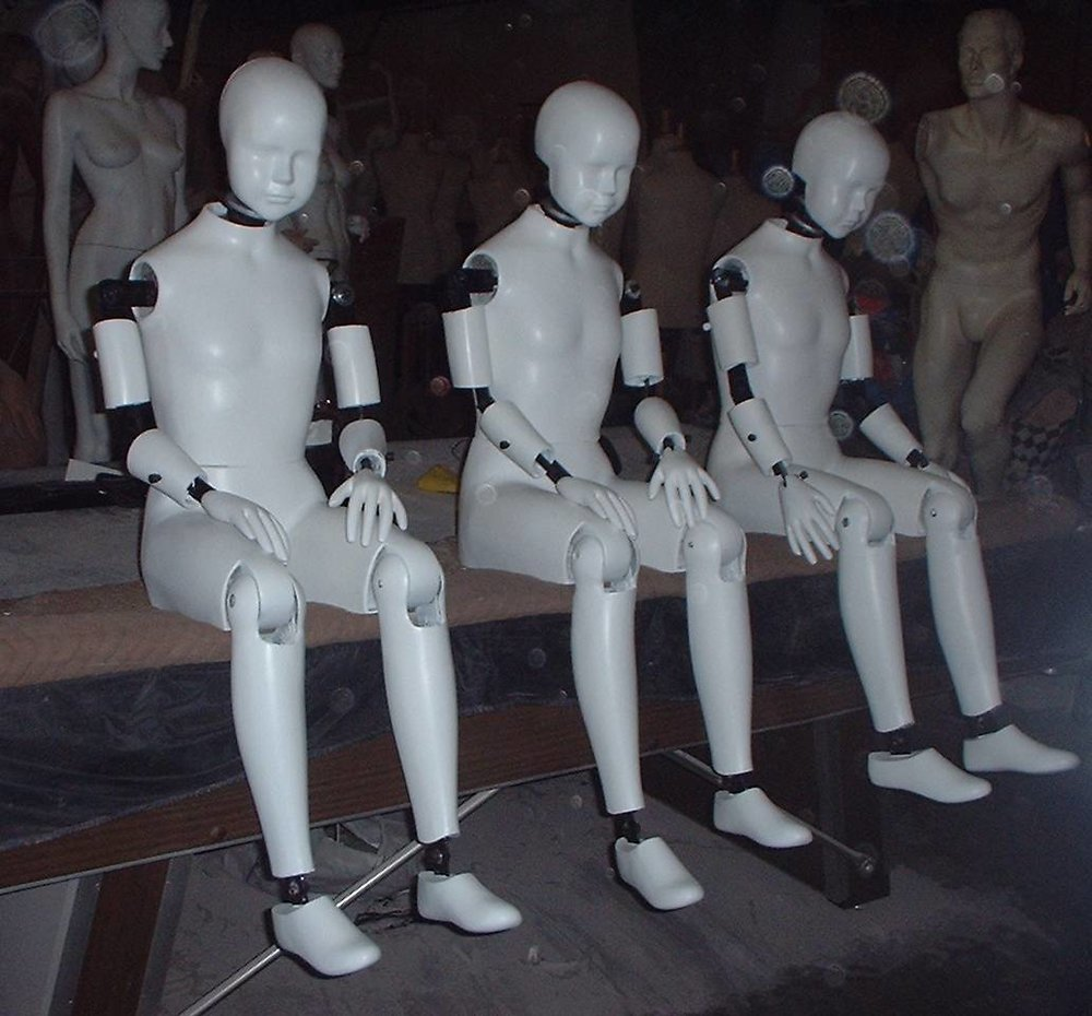 Children Faux Crash Test Dummies