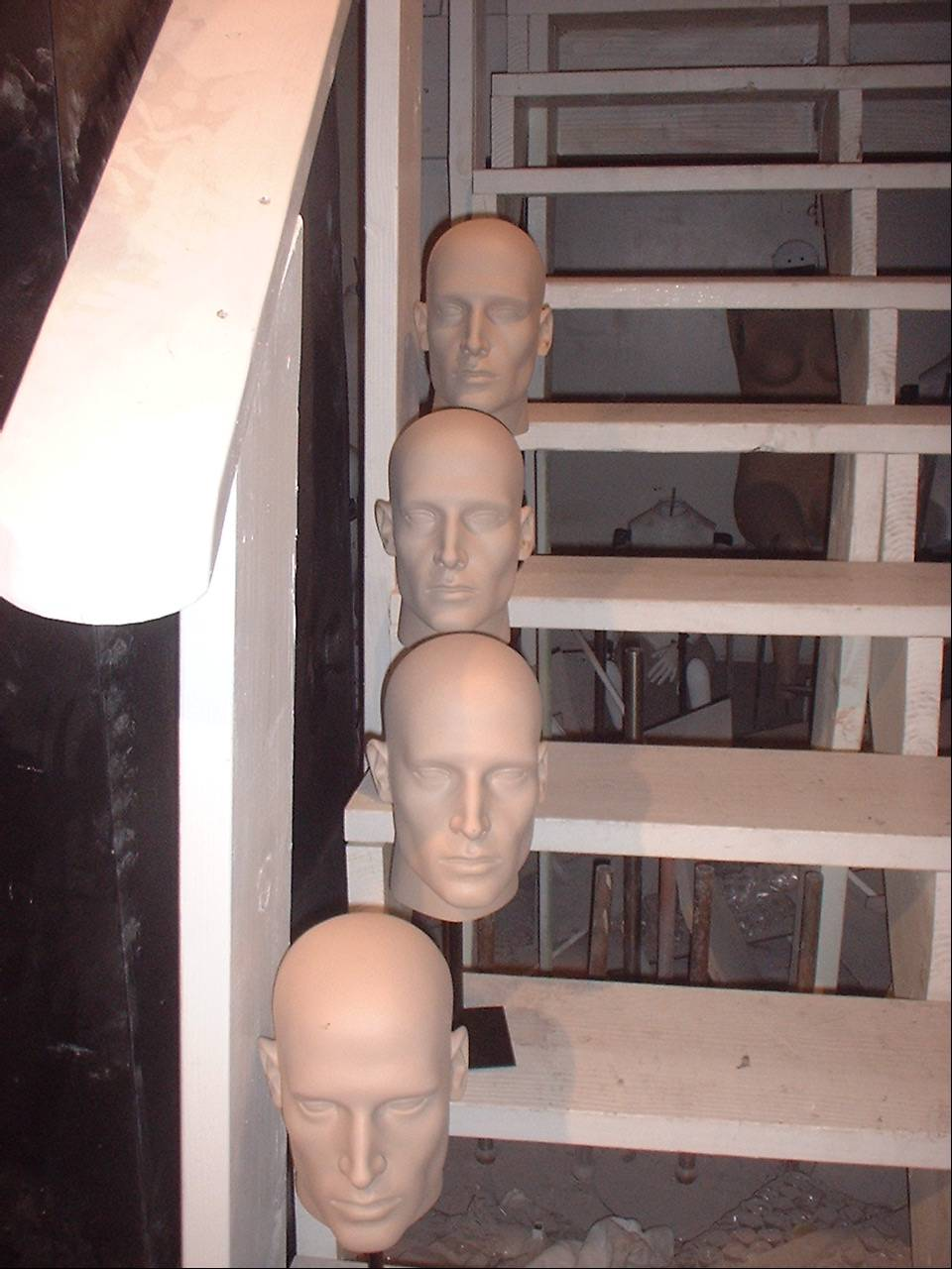 "Our Male ""B"" Head on Stands"