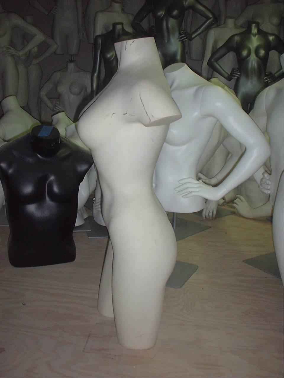 Busty Female 3/4 Form