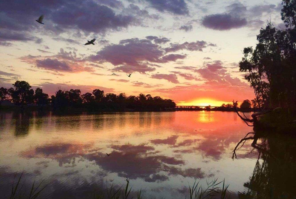Murray River 2.JPG