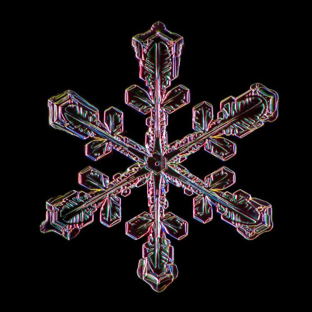 Snowflake 2014.03.02.002.JPG