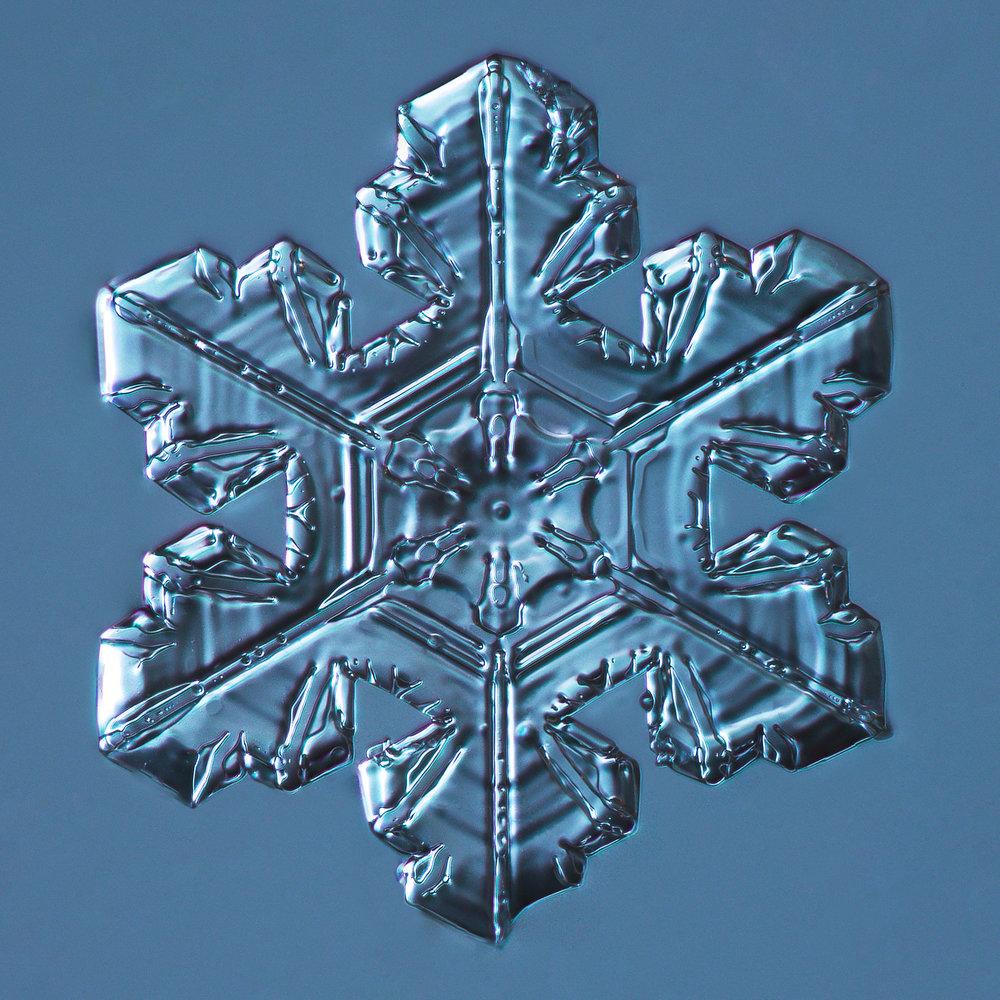 Snowflake 2014.03.23.005.2.JPG