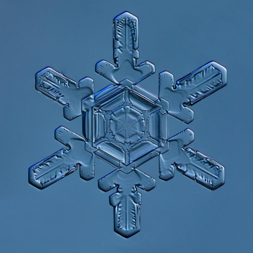 Snowflake 2015.01.02.22.1.JPG