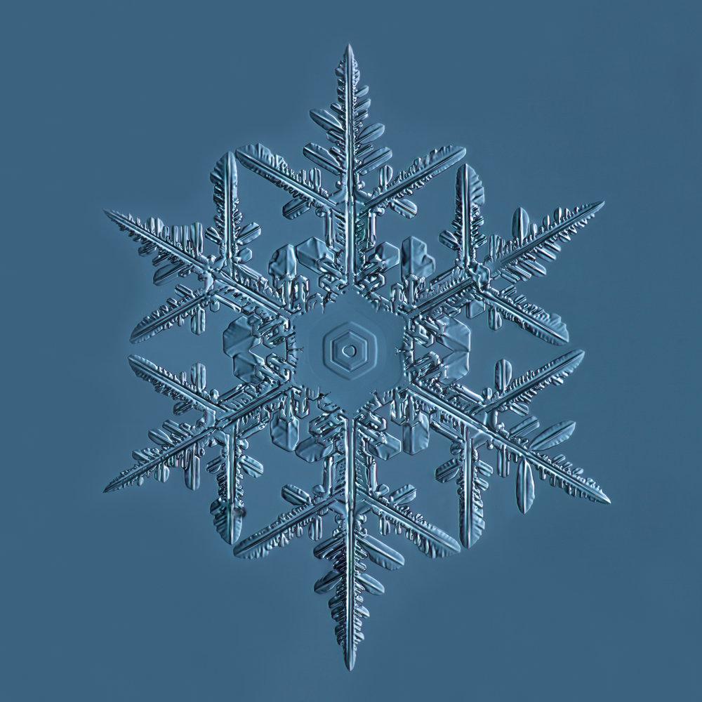 Snowflake 2015.02.02.001.JPG