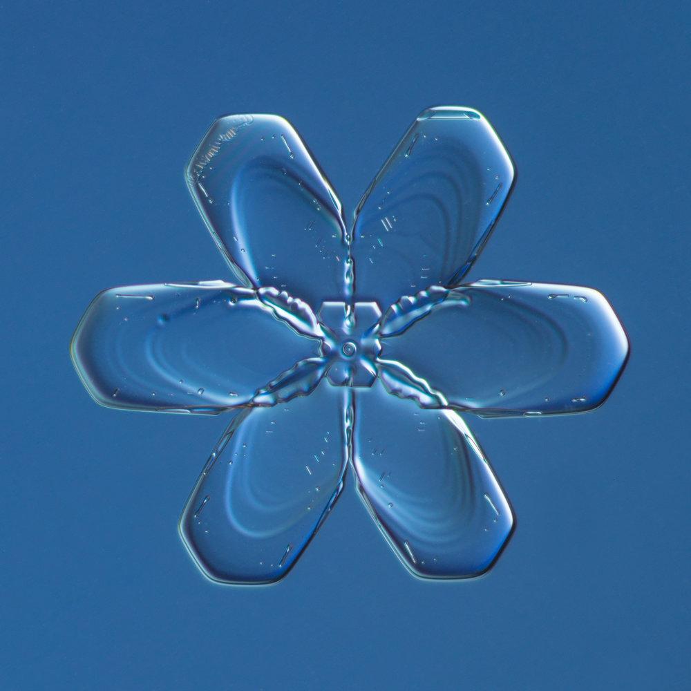 Snowflake 2015.02.21.001.JPG