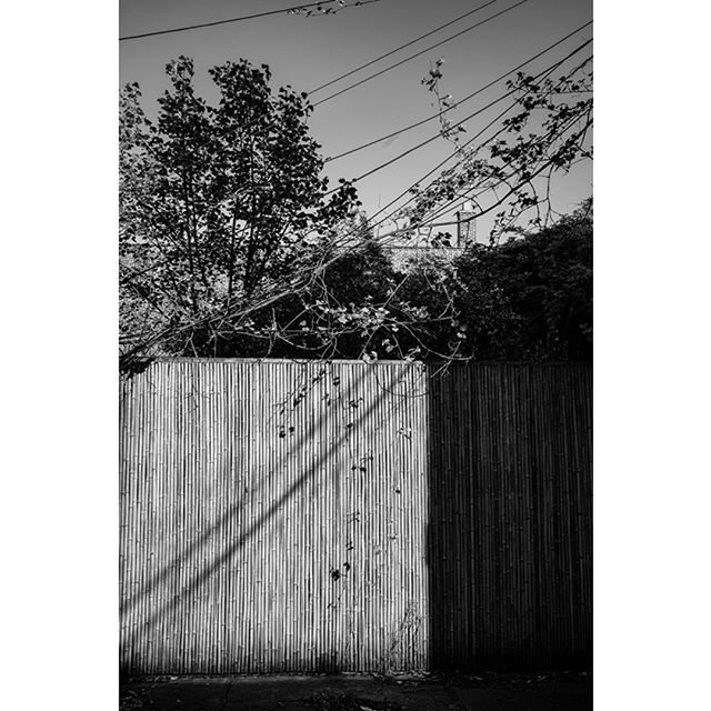 Fence and wire... #newyorkcityphotographer #bnwphotography #bnw_captures #bnw_lovers #brooklyn