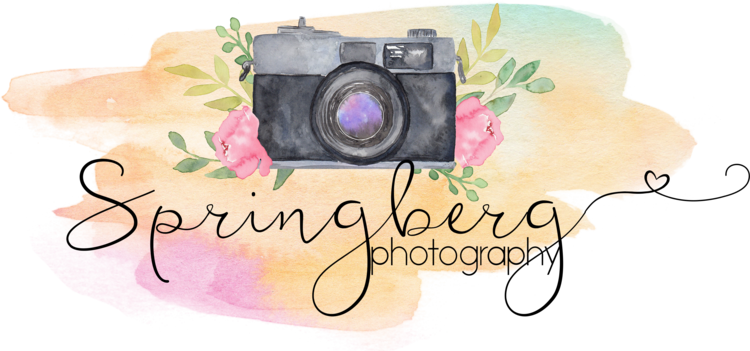 Springberg Photography