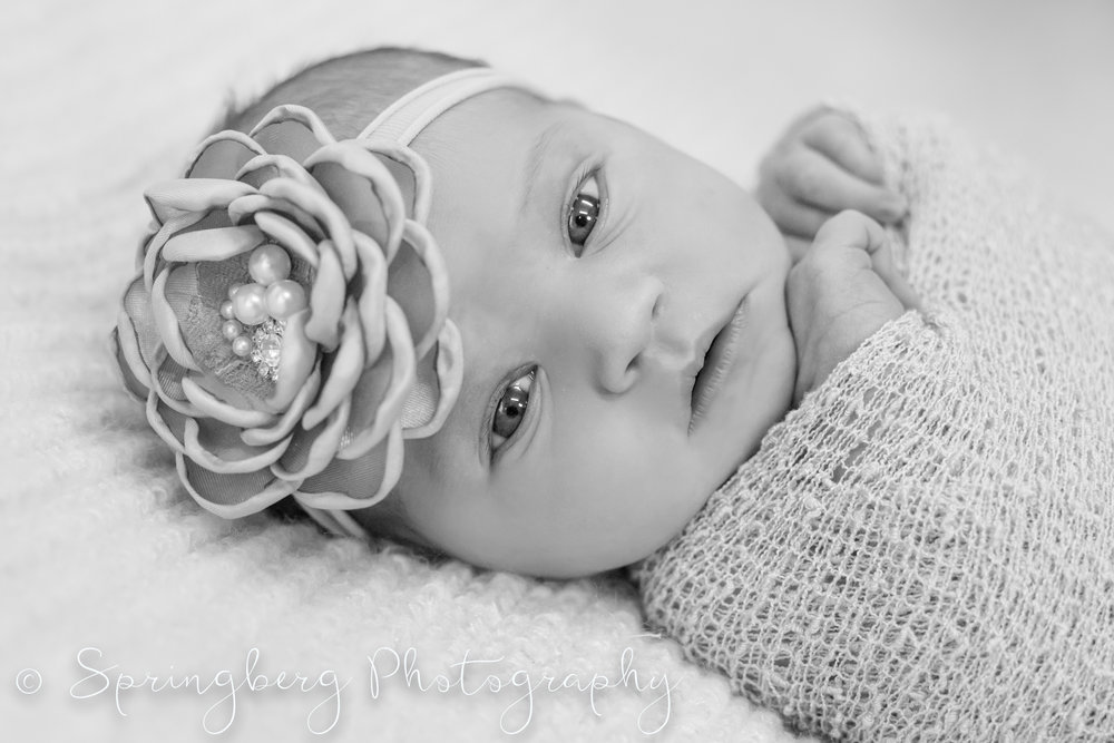 newborn-traverse-baby-girl-102.JPG