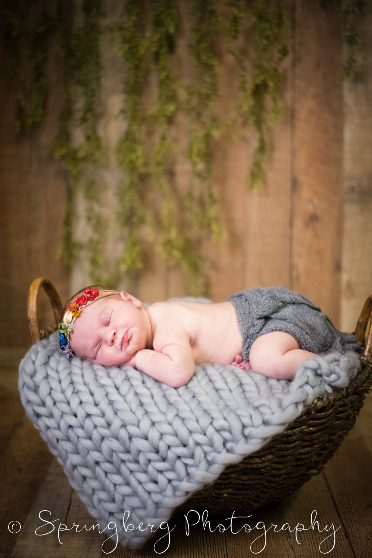 newborn-traverse-baby-girl-101-2.JPG