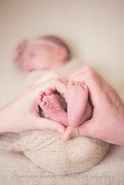 newborn-traverse-baby-girl-103.JPG