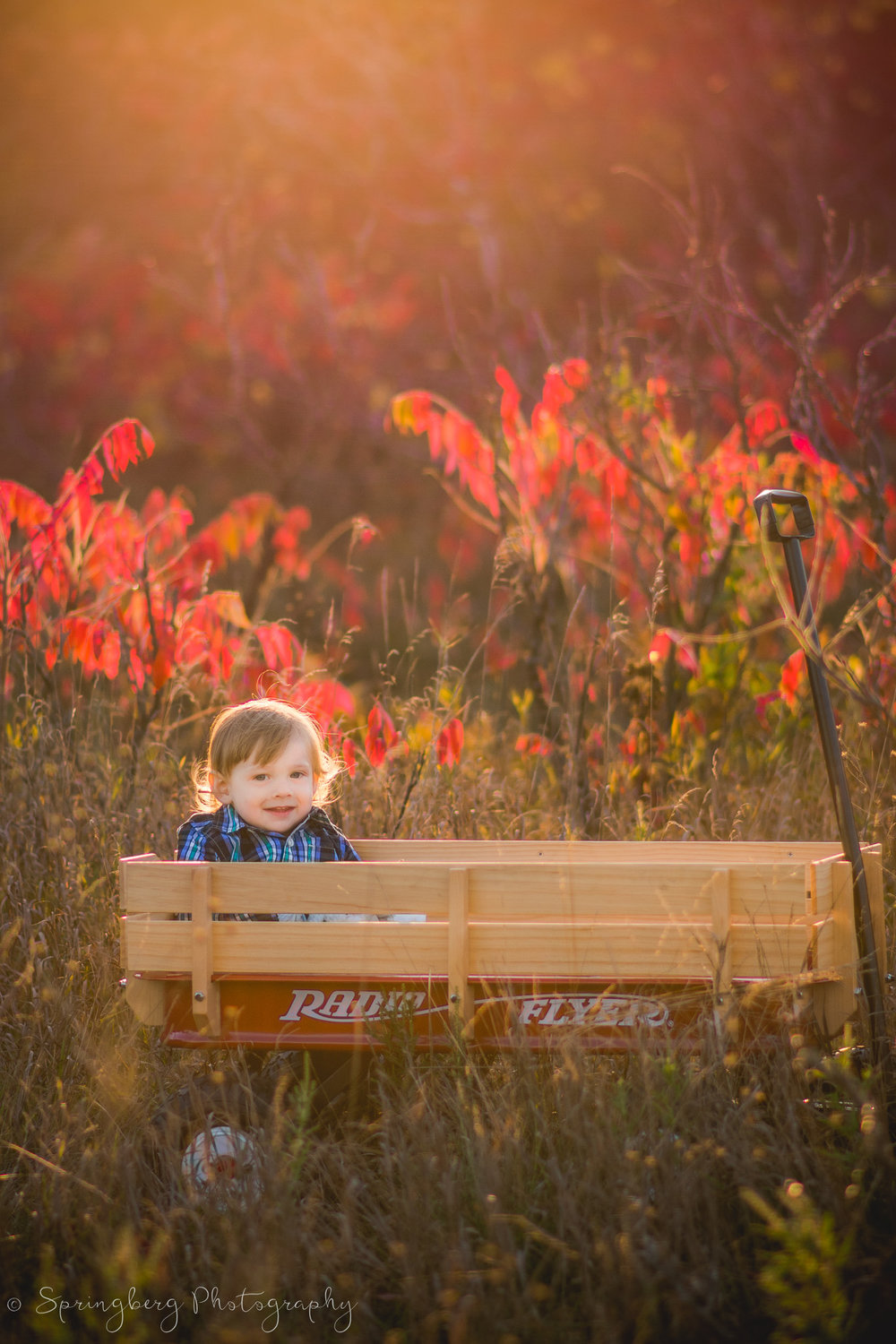 This wagon proved to be a cute AND practical prop to bring along for this family's session! When not being photographed, it lugged their diaper bags, toys, and change of outfits with them along the way while we explored the nature trail!
