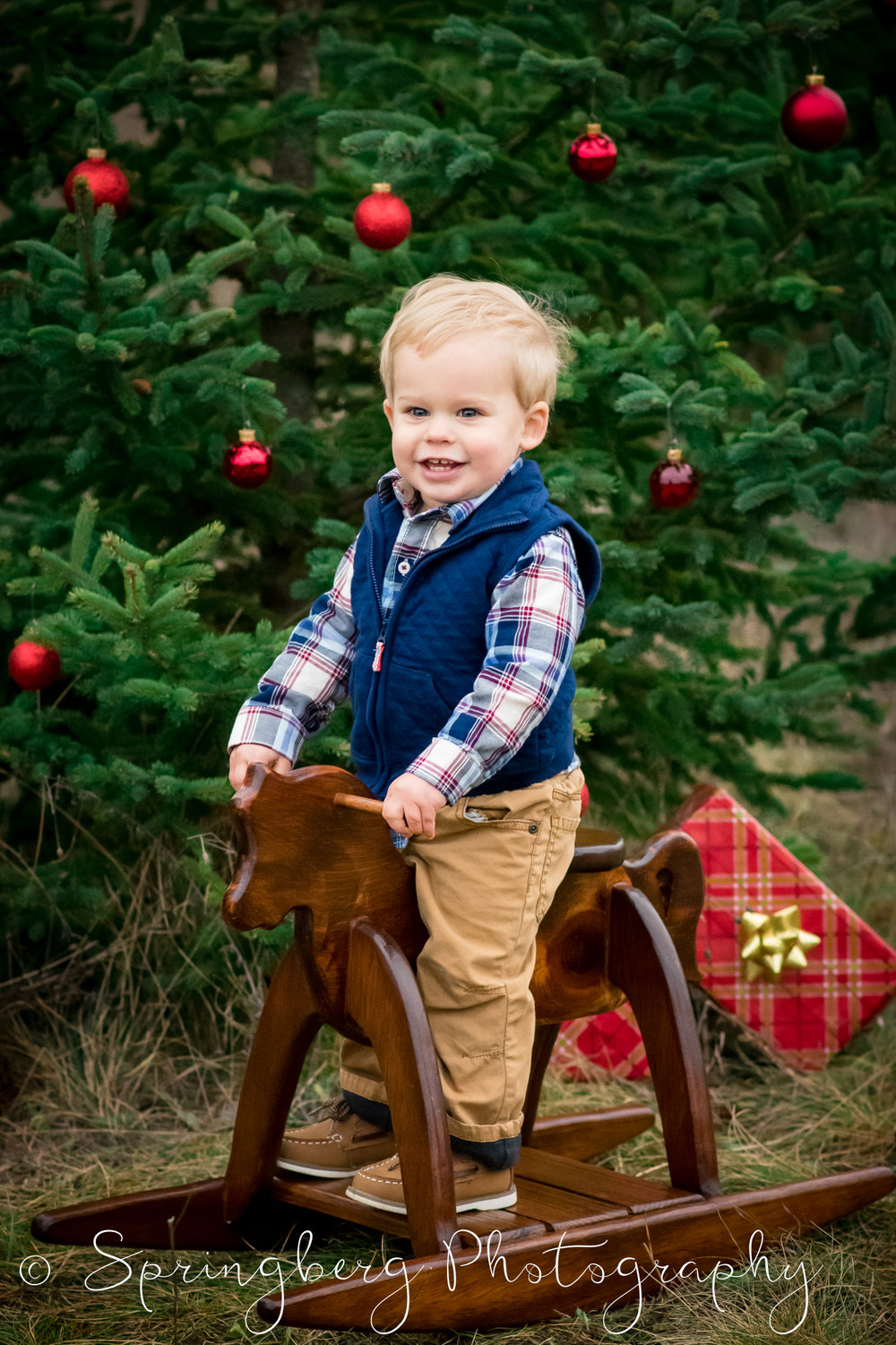 Props can enhance the themes for certain portrait session purposes, and make them more obvious: Birthdays, Holidays, New Family Member, Change of Seasons, etc.