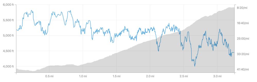 Grandfather Mountain Climb