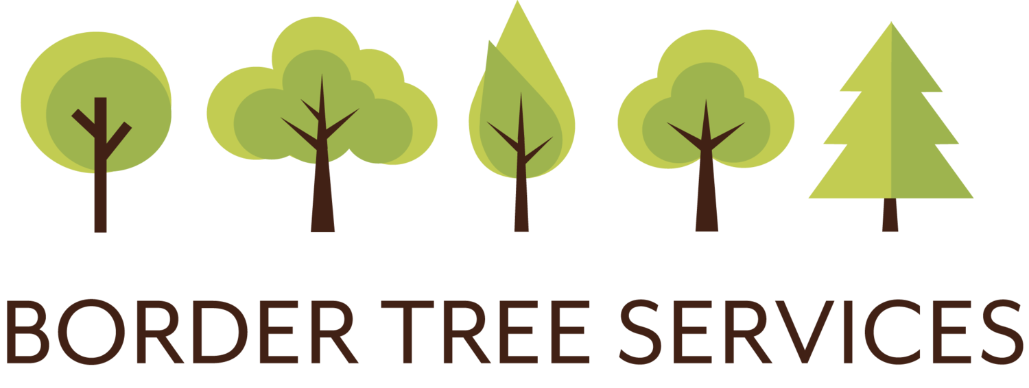 Border Tree Services