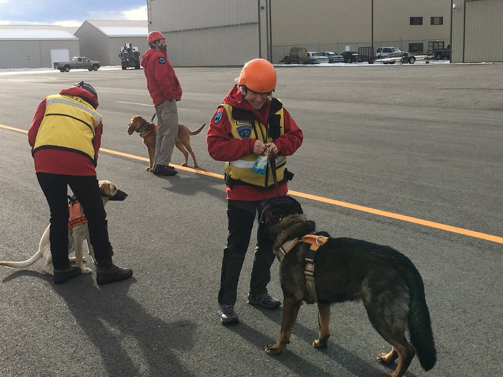 K9's Telly, Jake, and Sabre (and their handlers) wait for their turn to load.