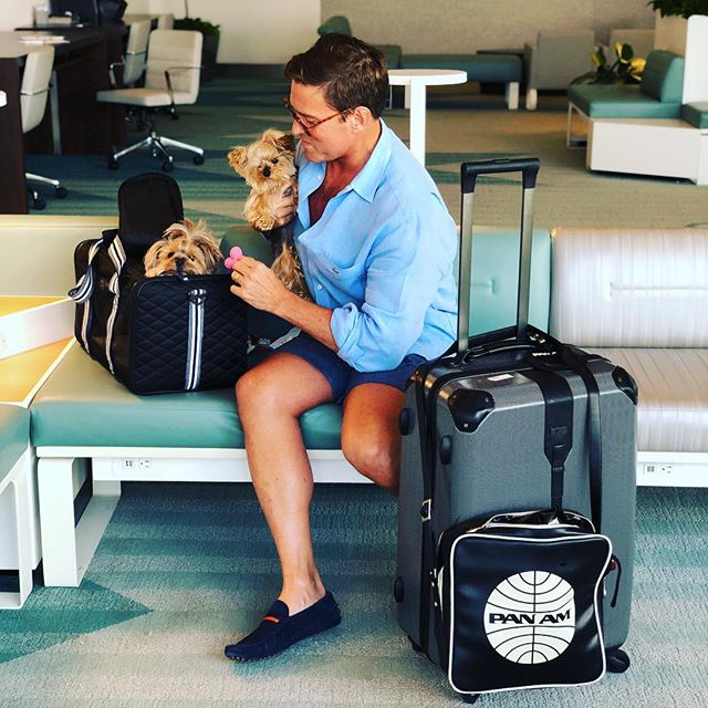 Jetiquette happens on trains too! Hillary and Fergie love the Brightline pet-guest experience too! #yorkiesofinstagram #yorkies #rail #travel #panam