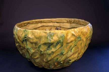 Hamida's Bowl