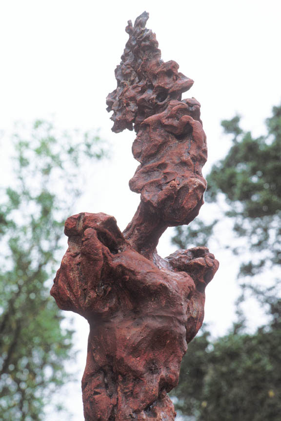 The Tribe - Detail, Paradise Ridge Sculpture Grove