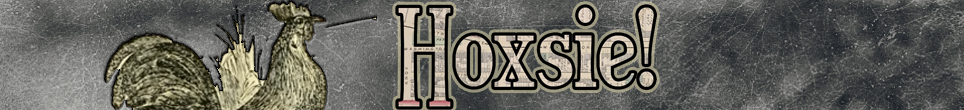 cropped-New-Hoxsie-Web-Banner-2018-1.png