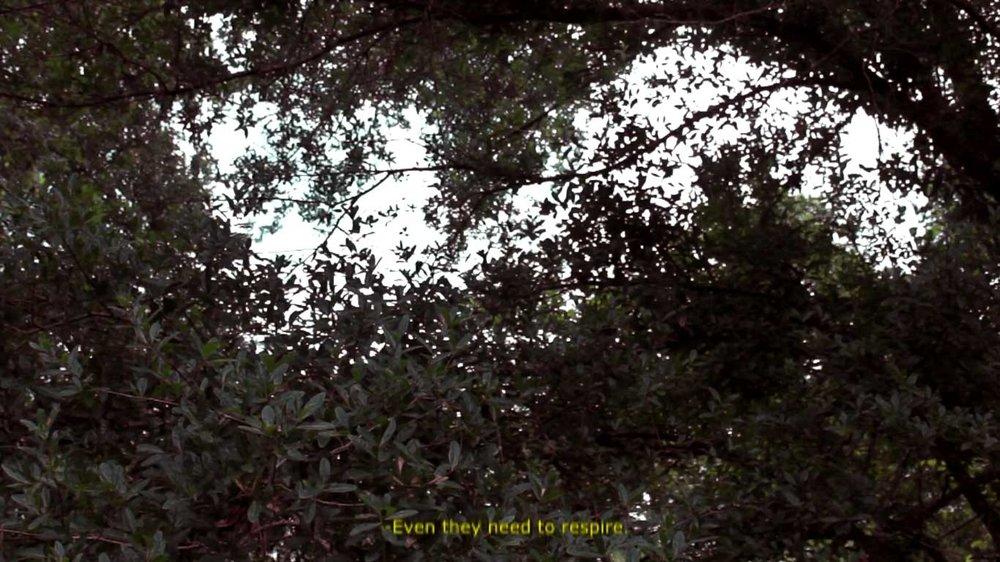 Screenshot-(346).jpg