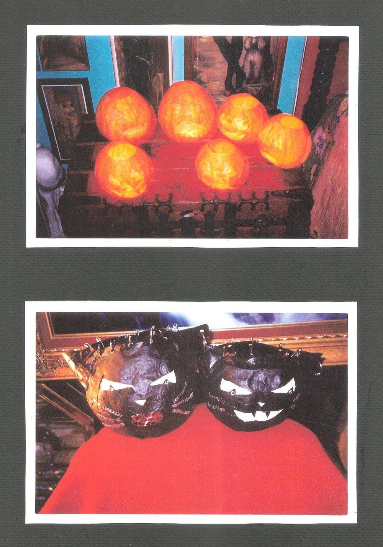 PUMPKINS AND CATS 001.jpg