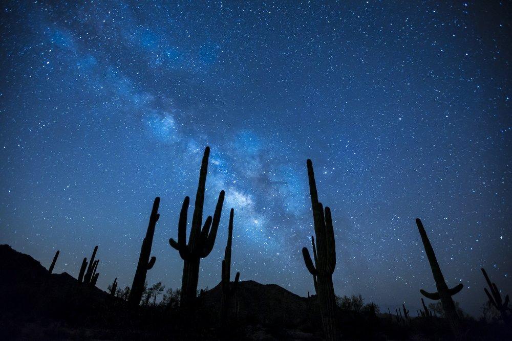 cosmos desert.jpg
