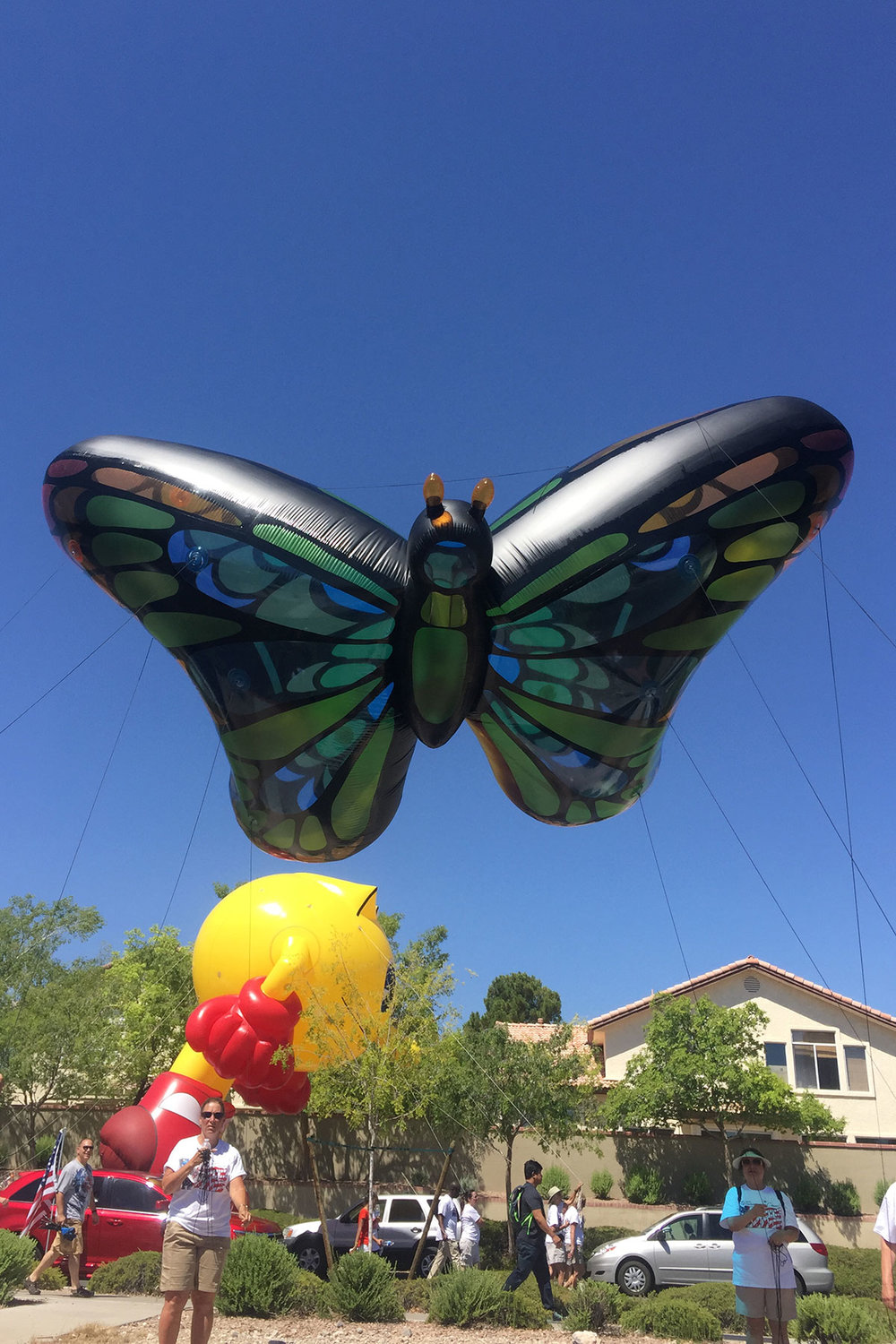 Butterfly-Helium-Inflatable-Shape