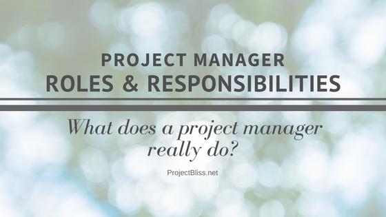 PM Roles & Responsibilities PB (5).png