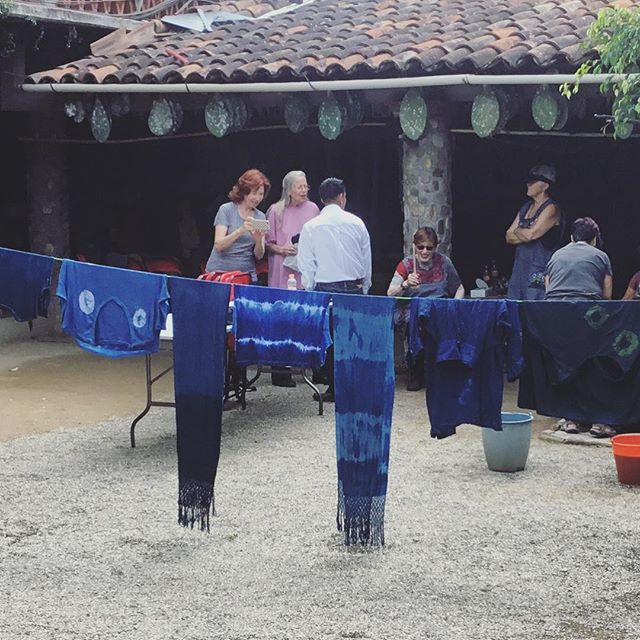 This crew got extra crafty in their Blue Hand workshop! A few are also going home with blue hair highlights and a new appreciation for the versatility of indigo dye. 💙#weavingoaxaca #indigo #naturaldye #añil