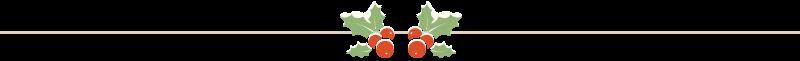 BB_Christmas_Divider.png