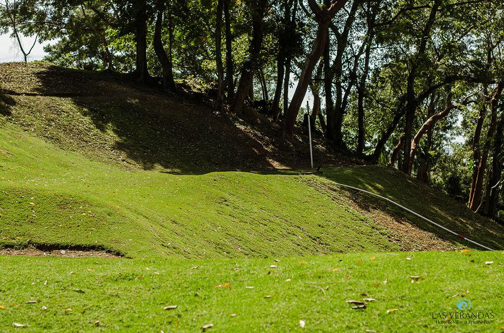 Black-Iguana-Golf-Club2.jpg
