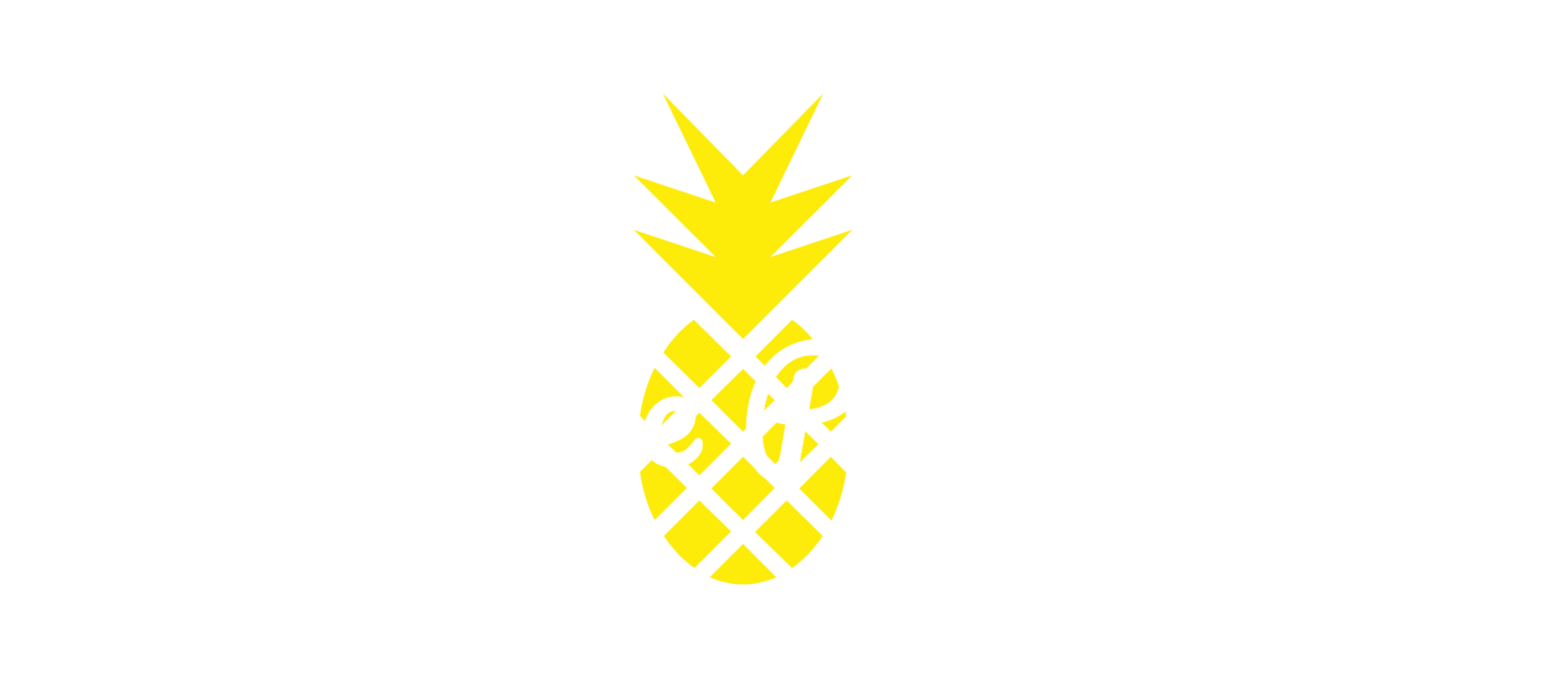 Pineapple Photobooth - Vancouver Photo Booth Rentals , BC