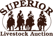 logo2_brown_clear.png