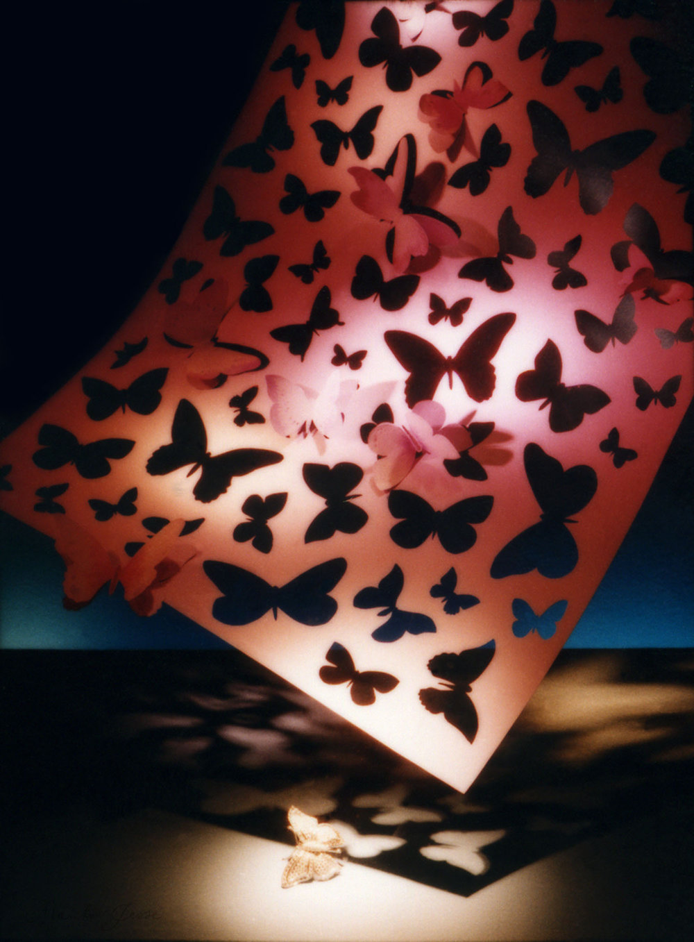 Tiffany & Co window display