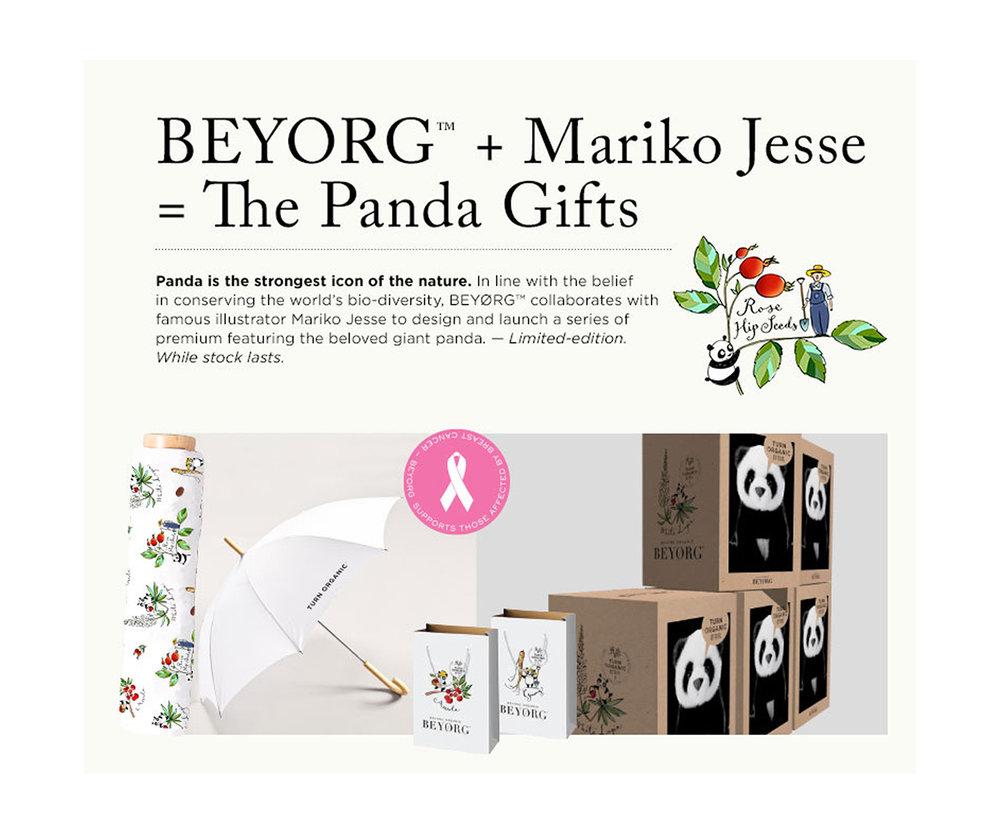 BEYORG promotional items