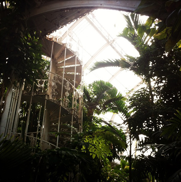 kew palm house 3