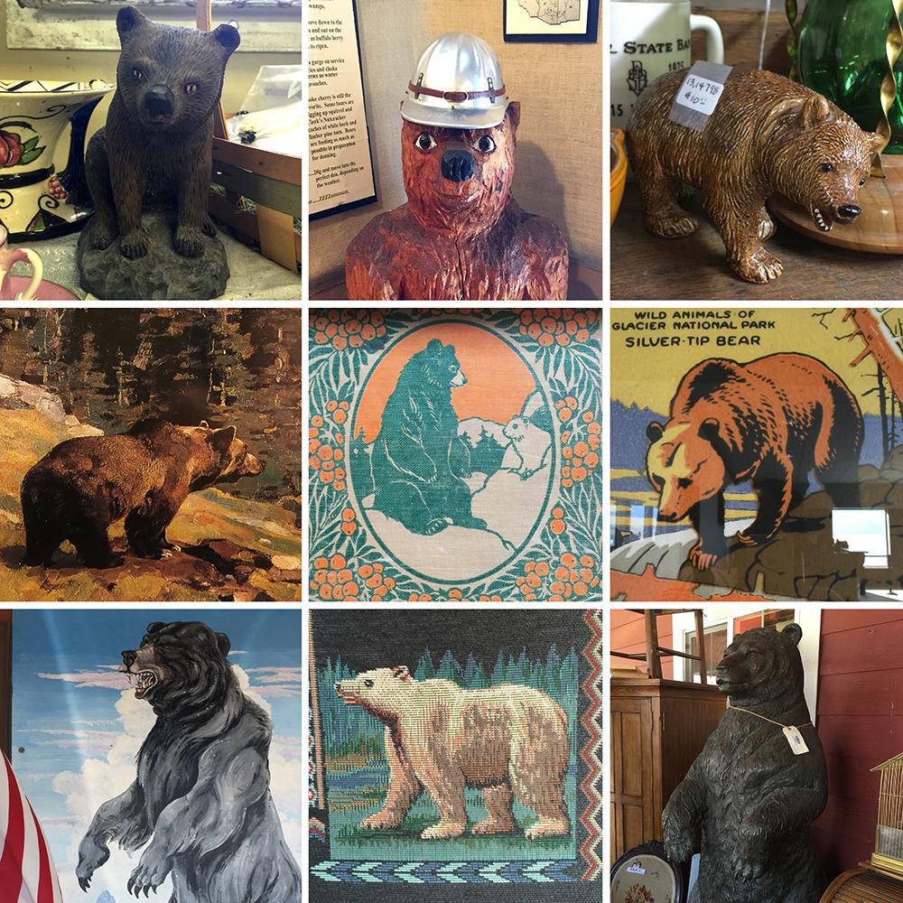 bears of montana