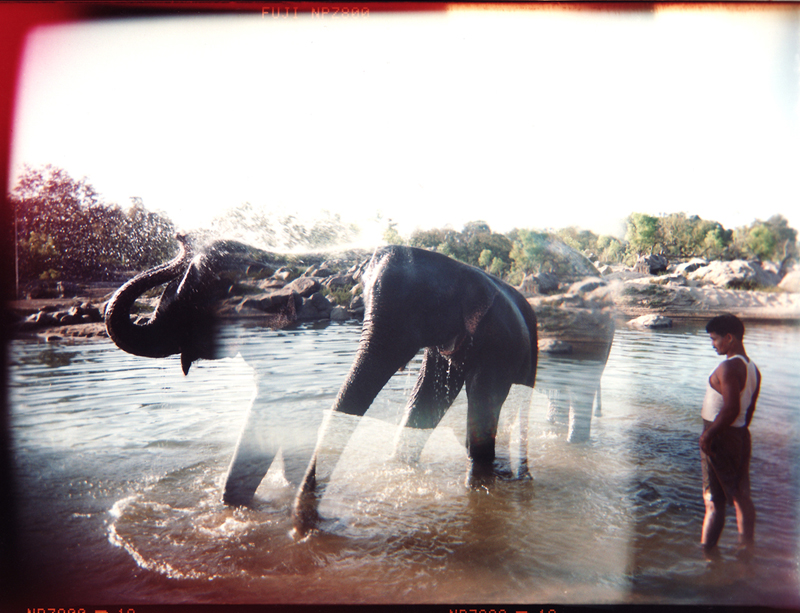 Jesse_Mariko_elephant and mahout