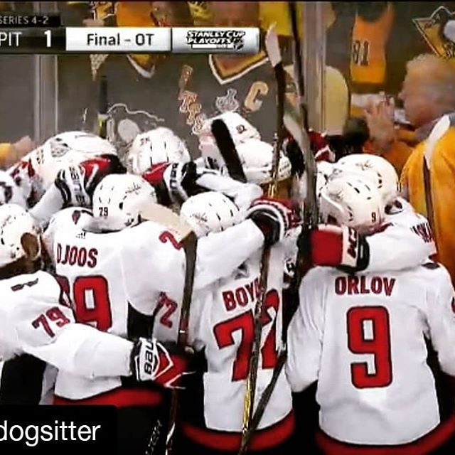 #Repost @dcdogsitter (@get_repost) ・・・ Congratulations to the CAPITALS!!!! What an amazing game!!!! #caps #stanleycup #nhl #pittsburgh #ALLCAPS #Penguins #nhlplayoff #washington #hockey #red #sports #niskanen #oshie #holtby #playoffs #nhlplayoffs2018 #penguinscapitals