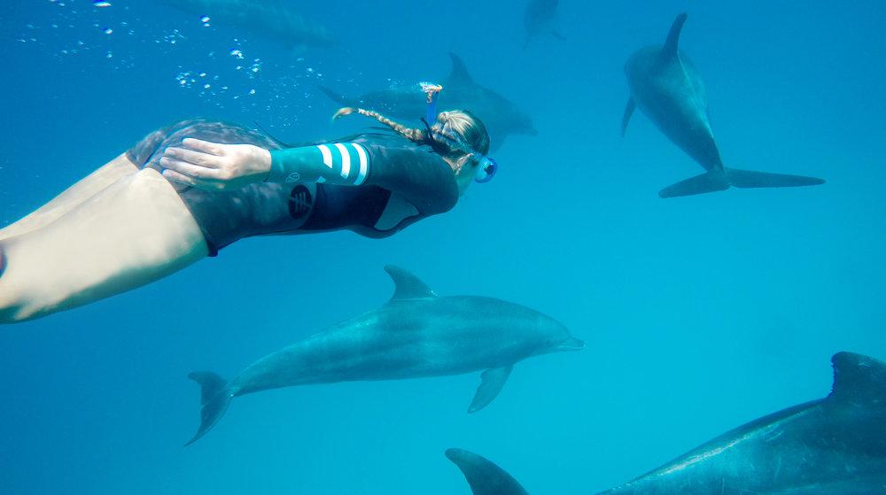 Schnorchelausflug & Delfin-Tour