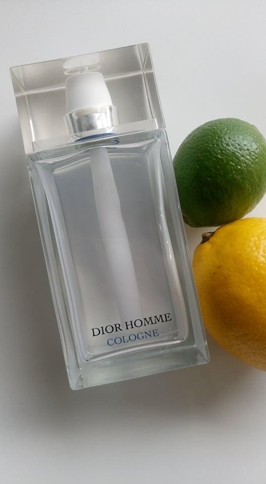 citrus6.jpg