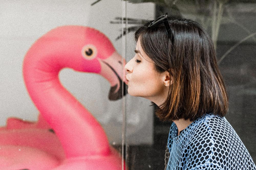 Viola Anna flamingó