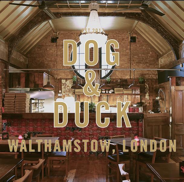 Dog & duck.jpg