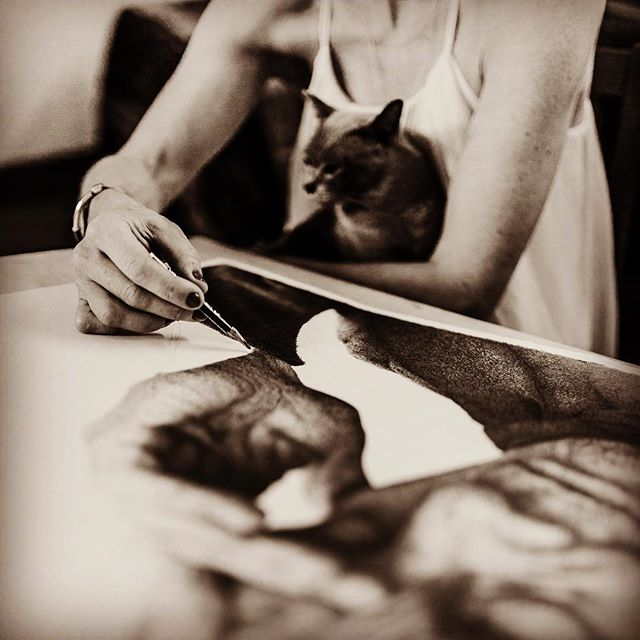 Feline inspiration #slowart #pencil drawing #pencilportrait #photorealism
