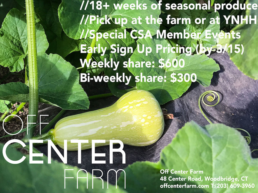 Off Center Farm-CSA Flyer Butternut Squash SMALL.jpg