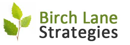 Birch Lane Strategies