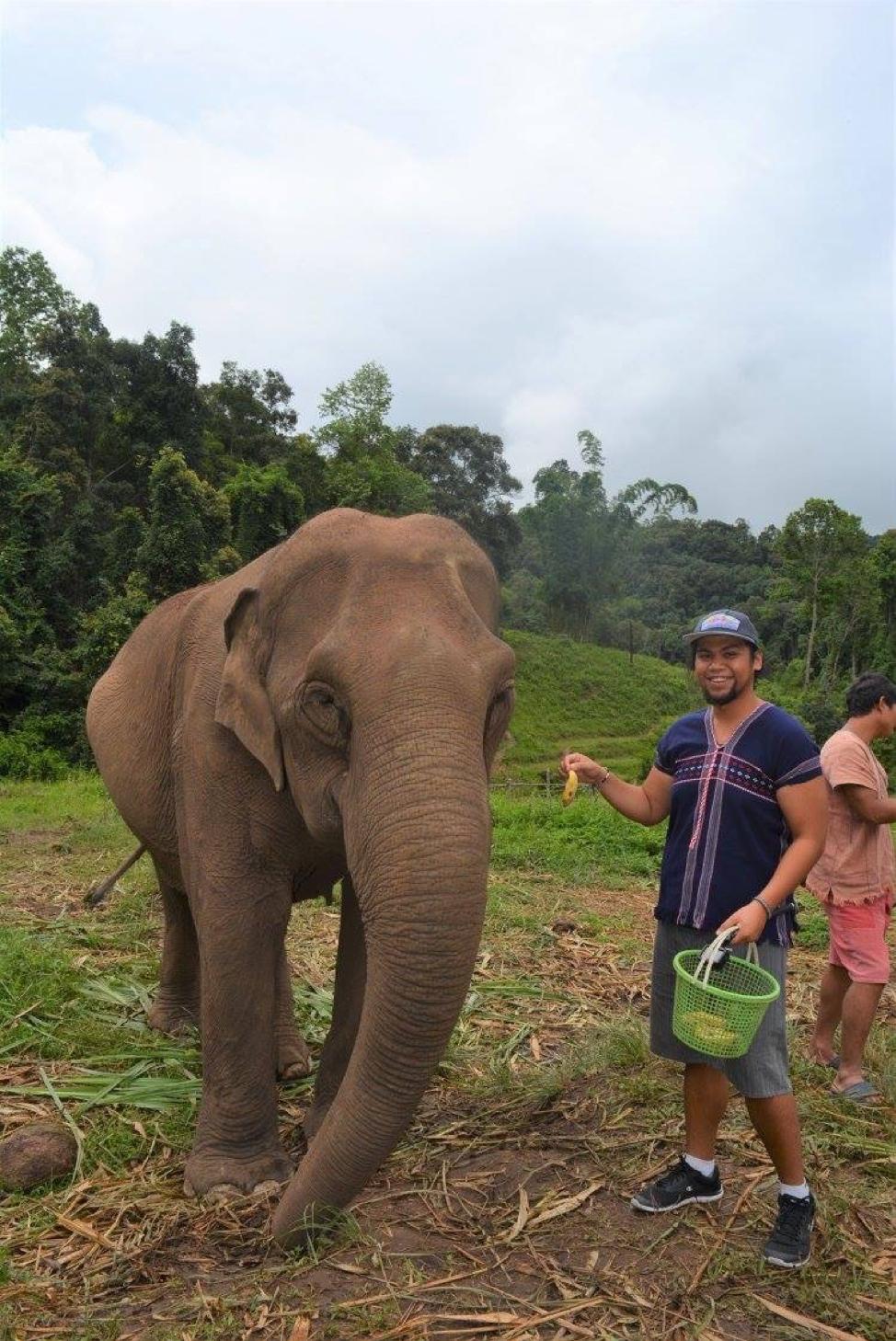 elephant 3 .png